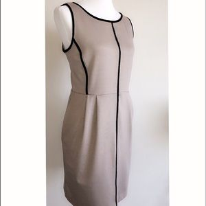 *NWT* Apt 9 Contrast Piping Dress